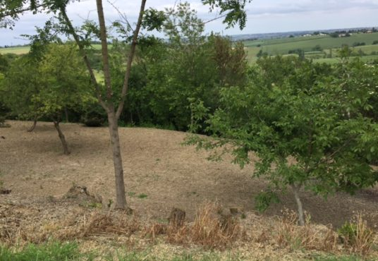 Terrain constructible à Deyme Montbrun 31450