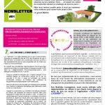 Newsletter construction maison